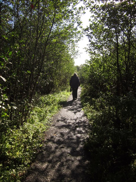 Footpath at Coldeast