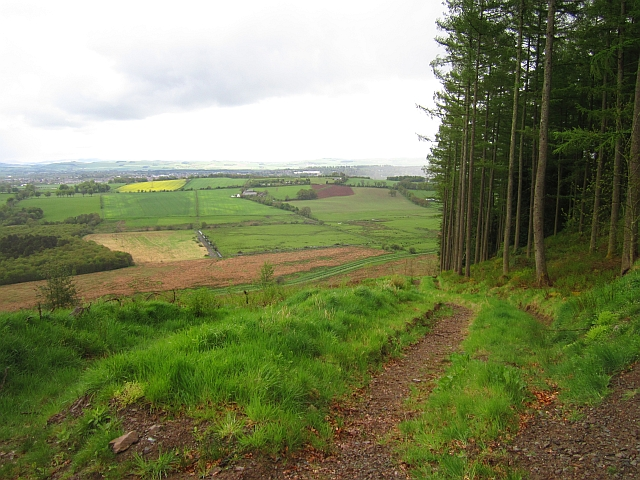 Path, Mabie Forest