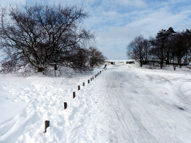 Snow covered road at Beacon Hill Country Park