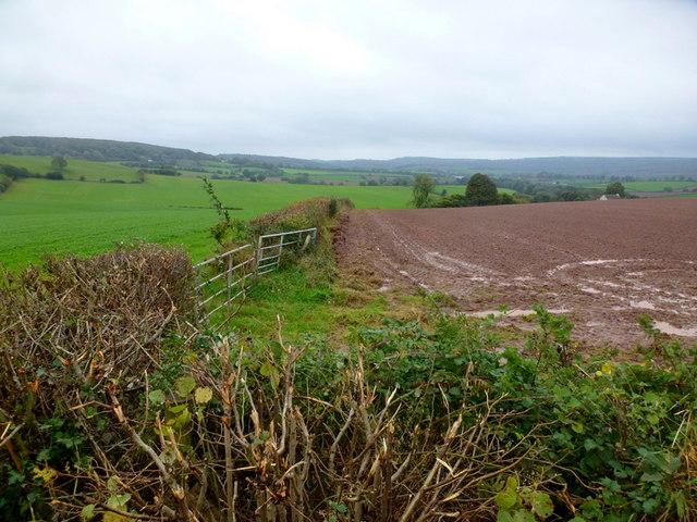 Farmland east of Hygga