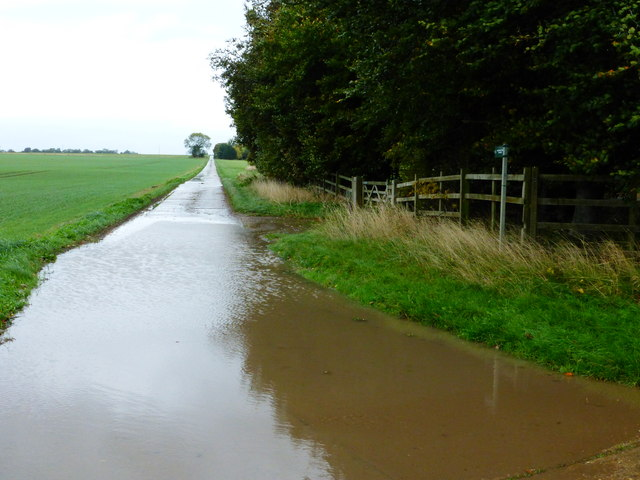 Restricted byway going north from Boham's Road