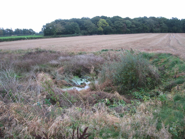 Overgrown pond in stubble field by Round Wood