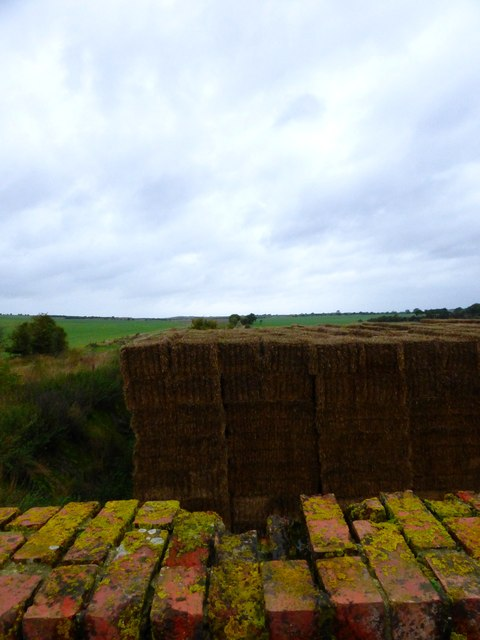 Dismantled railway south of Upton (1)