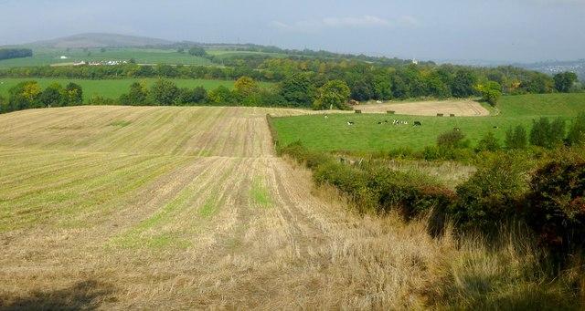 Fields near Knowetop Farm