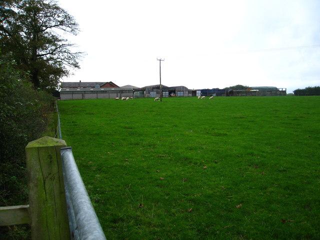 Grazing field beside Langford Farm buildings