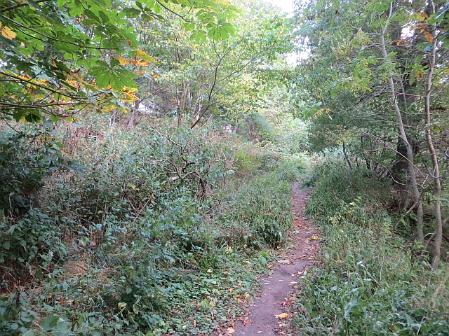 Path from Temple to Gore Glen