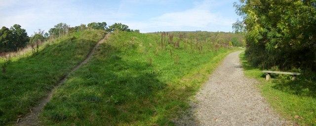 Path beside playing field