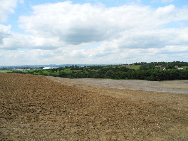 Arable land west of Mowlands Farm (1)