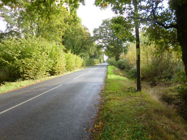 Ellingham, The Belt