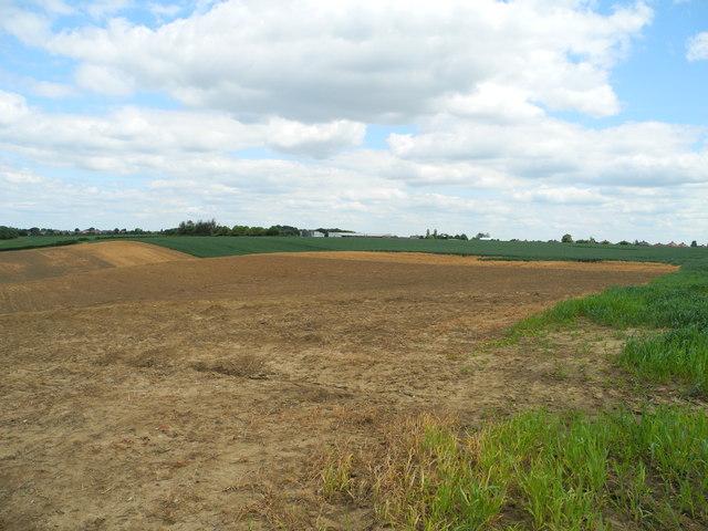 View southeast towards Mowlands Farm
