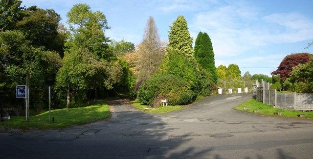The start of Glenoran Road