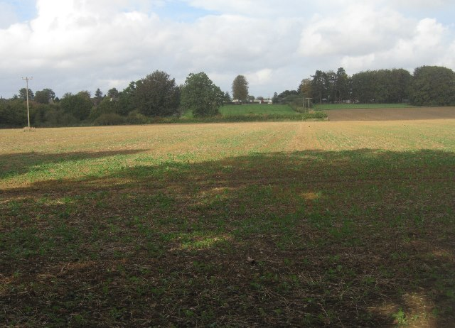 Farmland east of Pardown