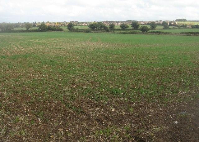 Distant view of Basingstoke fringe