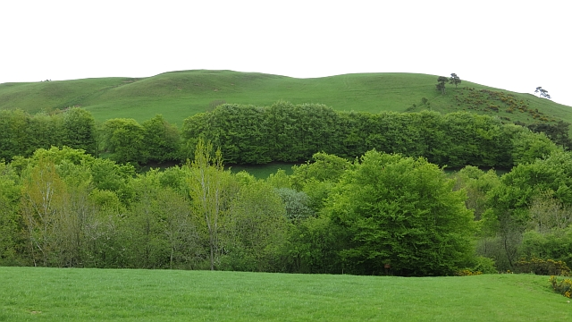 Slopes of Barr Hill