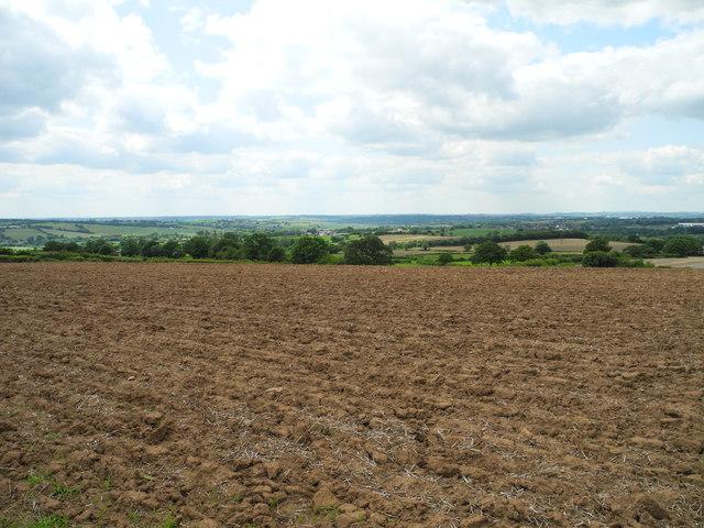 Arable land west of Mowlands Farm (3)