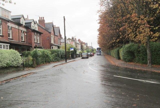 Jackson Avenue - viewed from Lidgett Walk