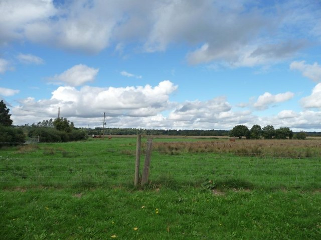 Farmland north of Ufton swingbridge