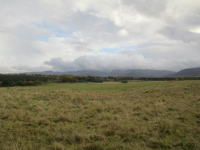 Farmland at Drumchork