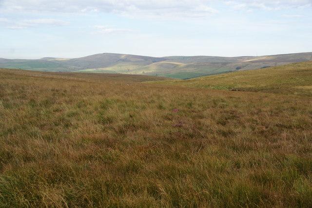 Piggford Moor Nature Reserve