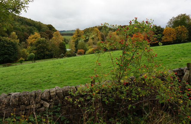 View from Monsal Trail, Autumn