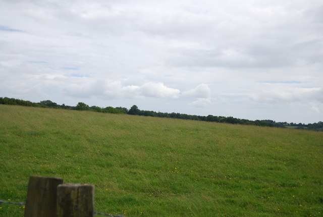 Grassland on the High Weald