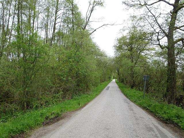 Moss Road