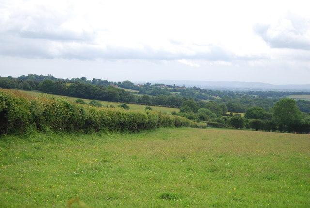 View across the High Weald