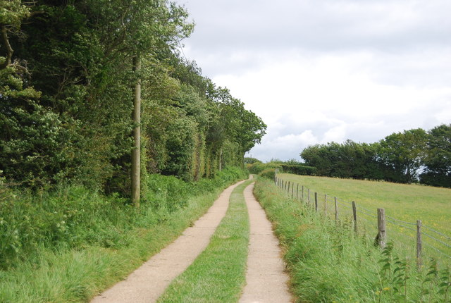 Track across the High Weald