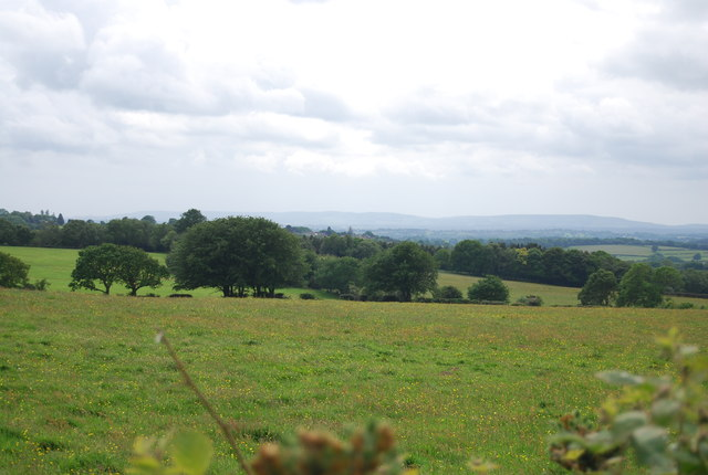 View over the High Weald