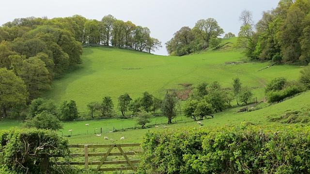Kiln Hill