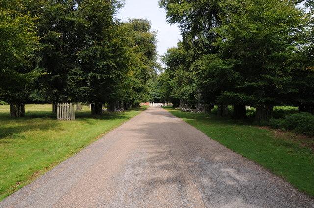Road through Dunham Park