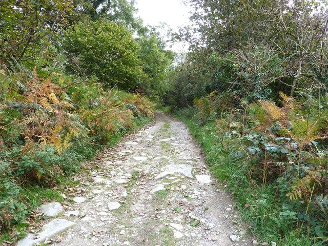 Track to Daffin Farm, Carsluith