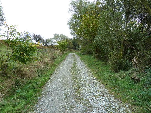 Deciduous woodland at Bagbie