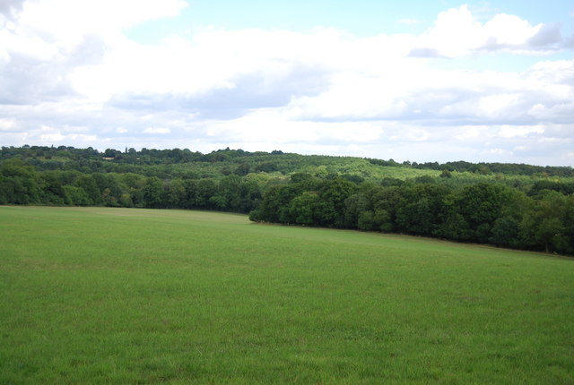 View of the High Weald landscape