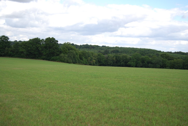 A High Weald landscape