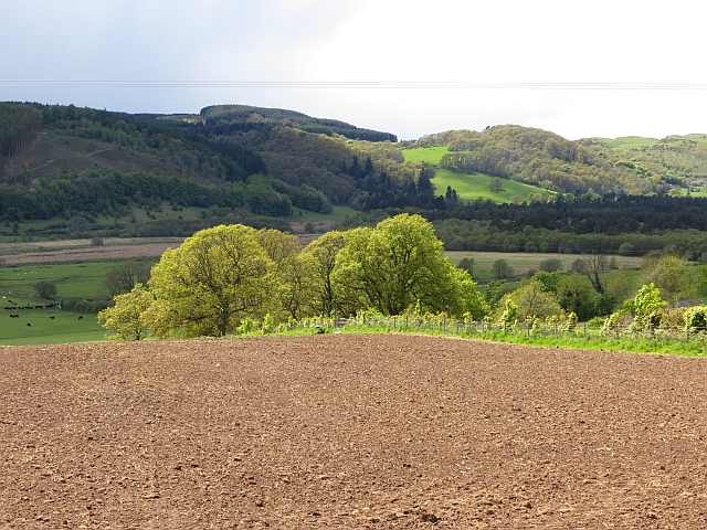 Cultivated ground, Carruchan