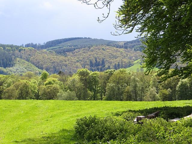 Grassland, Carruchan