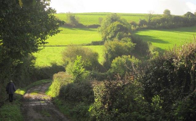 Kerswell Lane