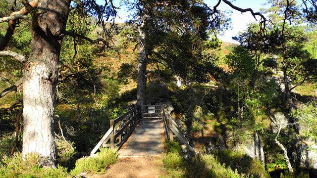 Polcherian Bridge, Glen Strathfarrar