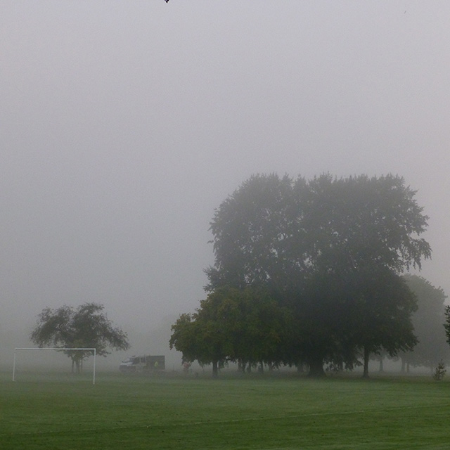 Misty morning in West Park