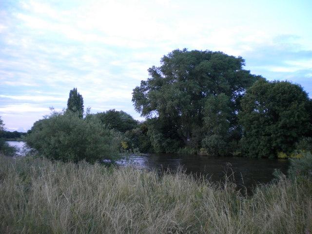 Barton Island, River Trent