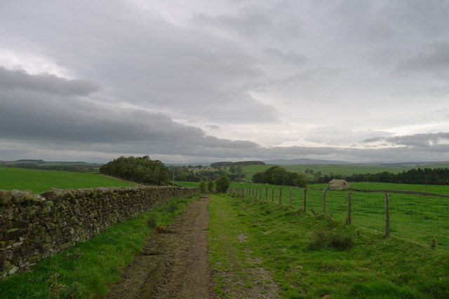 Looking along the bridleway towards Flasby