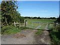 SJ6578 : Waymarked footpath from Knutsford road by Anthony O'Neil