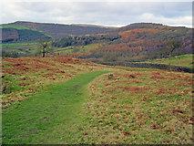SK2671 : Pathway at Dobb Edge by Trevor Rickard