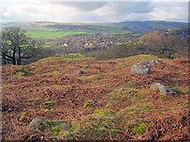SK2671 : Rock outcrops at Dobb Edge by Trevor Rickard
