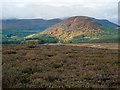NH5769 : Heather moorland above Glen Glass by Julian Paren