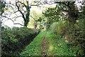 SJ4447 : The Bishop Bennet Way near Shocklach by Jeff Buck