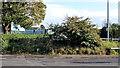 J4874 : Course of old railway, Newtownards by Albert Bridge