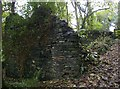SX1291 : Ruin in woodland above Valency valley by Christopher Hilton