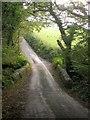 SX3566 : Bridge, Amy Down by Derek Harper